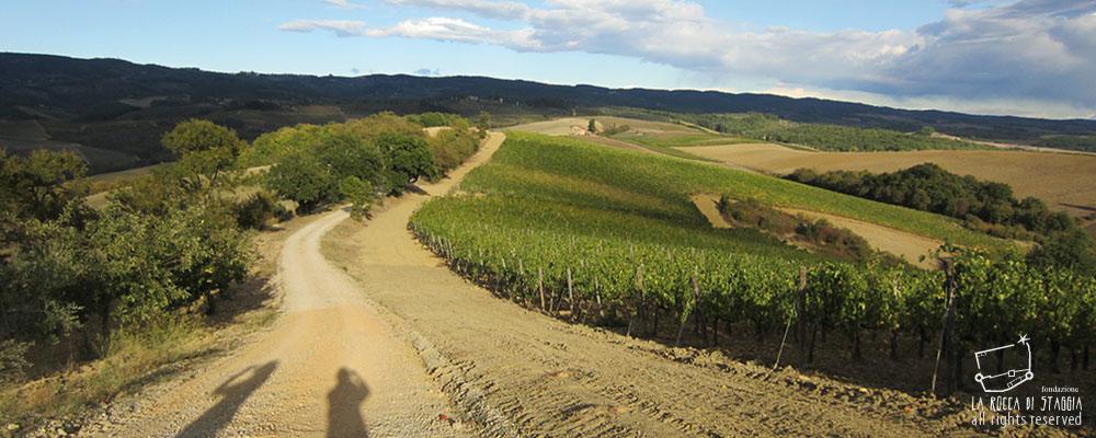 escursioni_con_guida_ambientale